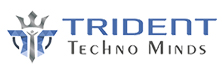 Trident Techno Minds: Assuring Improved Business Performance
