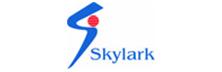 Skylark Information- Addressing System Integration Requirements Comprehensively
