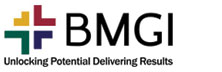 Bmgi: Creating Substantial Value For Clients And Enhancing Business Performances