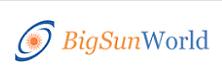 Bigsun Technologies: Leveraging Web Applications For Erp