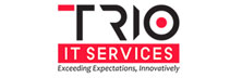 Trio It Services : Securing It Assets Through A Holistic Approach