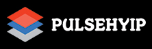 Pulsehyip: Giving A Unique Identity To Cryptocurrency Investment Businesses
