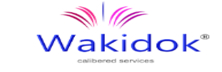Wakidok Innovative Solutions: Offering End-To-End Engineering Services From Design To Digital Testing