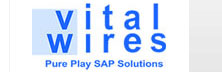 Vital Wires: Revitalizing Operational Capability Of Indian Cpg Smes
