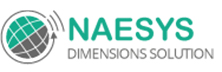 Naesys Dimensions Solution: Implementing Erp Solutions To Ensure Optimum Roi