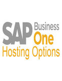SAP Business One Guide_V2