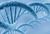 Clontech Laboratories Joins Forces with Vectalys SAS@356