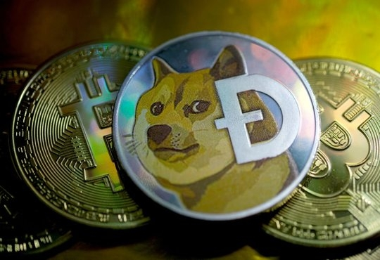 Dogecoin mania influences Indian crypto exchanges