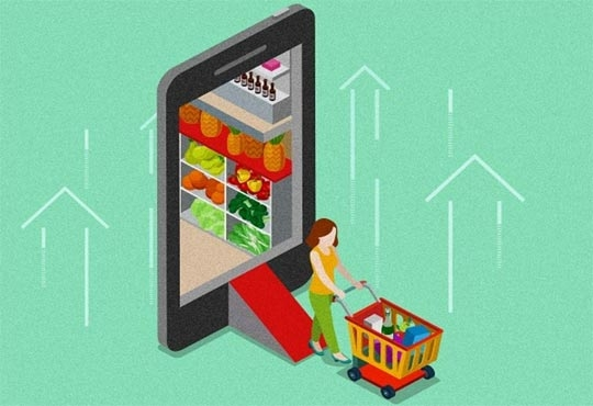 Government Stops Flipkart's Food Retail Venture in its Tracks