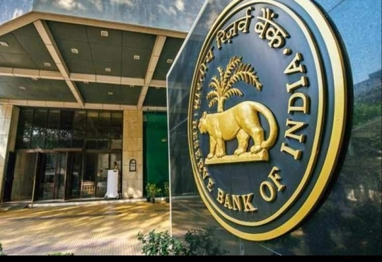 RBI establishes working group to regulate digital lending apps