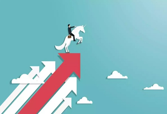 CarDekho secures $250 mn, becomes 31st Indian unicorn of 2021