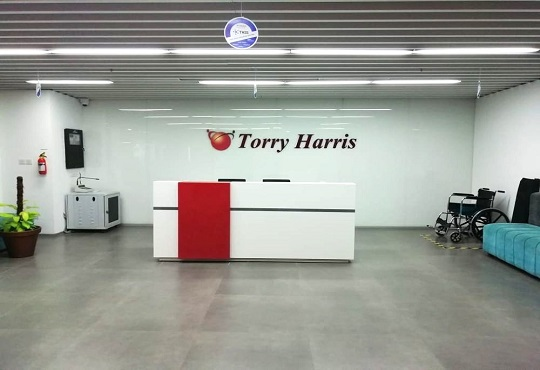 Torry Harris Integration Solutions wins the 'Best DevOps Services Company' award