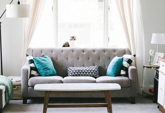 5 Reasons why you must pick the Best Sofa Designs in 2019